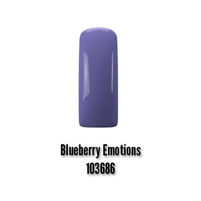 Blueberry Emotions